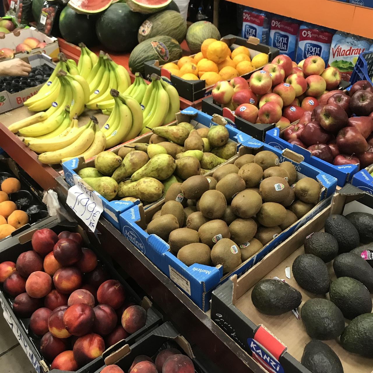 다채로운 색깔의 과일들 거리에서 만난 과일들