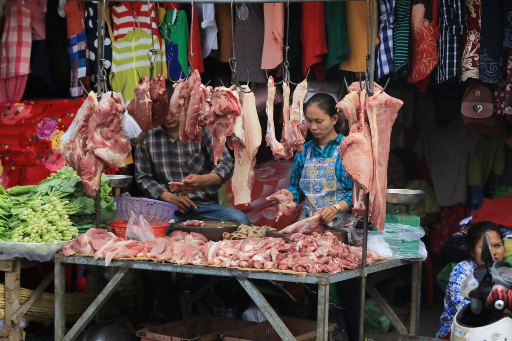 이번 근육돼지 해프닝은 정부의 관리소홀을 틈을 타 고기생산량을 늘리기 위해 과도한 약물을 돼지에 투입한 탓이라고 보는 전문가들의 의견이 많다. 더 큰 문제는 축산물에 대한 항생제 잔유물 검사관리가 소홀하다는 게 문제라는 지적도 나온다.