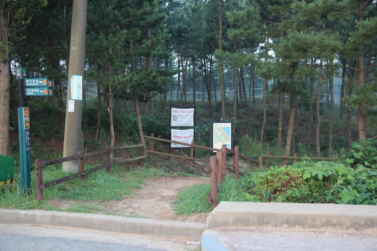 기지포 쪽에서 창정교를 건너면 오른쪽으로 안면해변길을 안내하는 표지판이 서있습니다. 이 길로 들어서면 안면해변이 나옵니다.