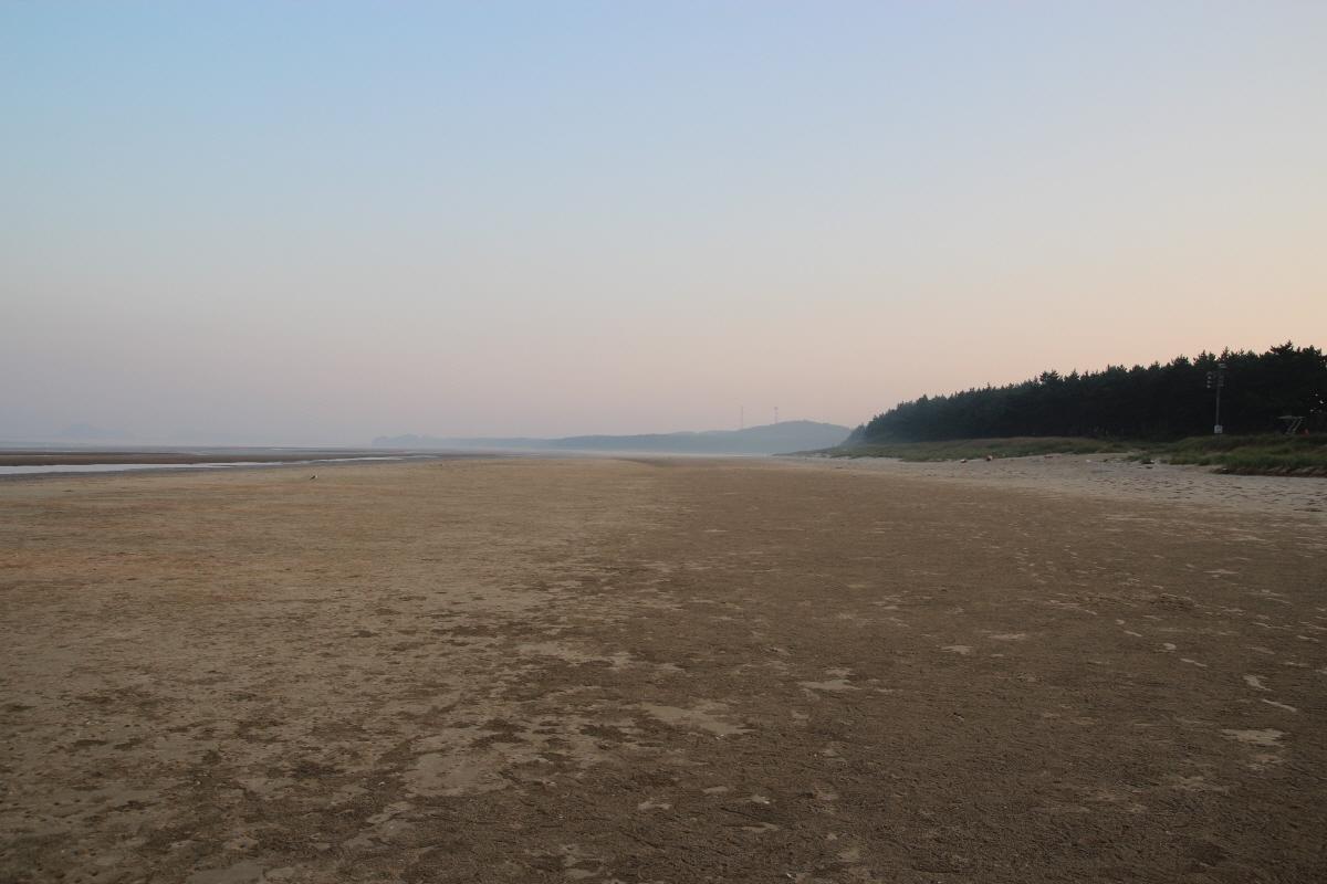 광활한 안면해변의 모습입니다. 게를 비롯하여 여러 바닷가 생물들의 보금자리이지요.