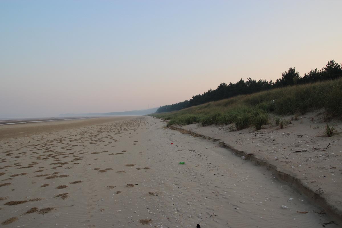 안면해변의 모습입니다. 바닷물로 인한 모레 침식이 이뤄지는 것은 아닌지 걱정이 됩니다.