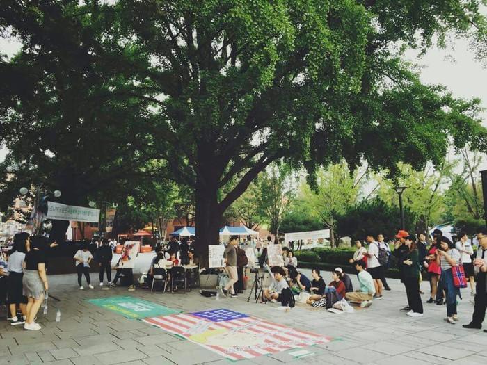 24일 서울 대학로. 트럼프막말이 써있는 성조기를 밟아주는 시민참여퍼포먼스를 진행했다