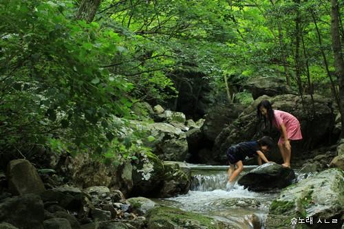 골짜기에서 온몸을 적시면서 숲바람을 함께 마십니다.