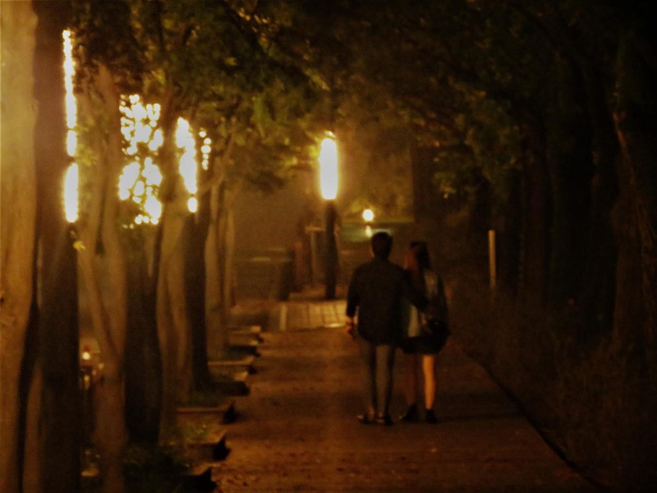 물론 이렇게 분위기 좋은 길은 사랑하는 이와 걸을 때 더 기분좋겠지요. 기분탓일 테지만 이 길을 걸으면 괜히 솔직함을 가장한 오글거리는 표현이 튀어나올 수도 있습니다. 그래도 사랑하는 이와 함께라면 무엇이든 괜찮겠지요?