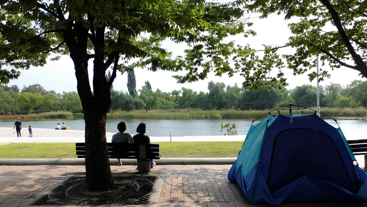 호수가 있어 아늑한 기분이 드는 평화공원.
