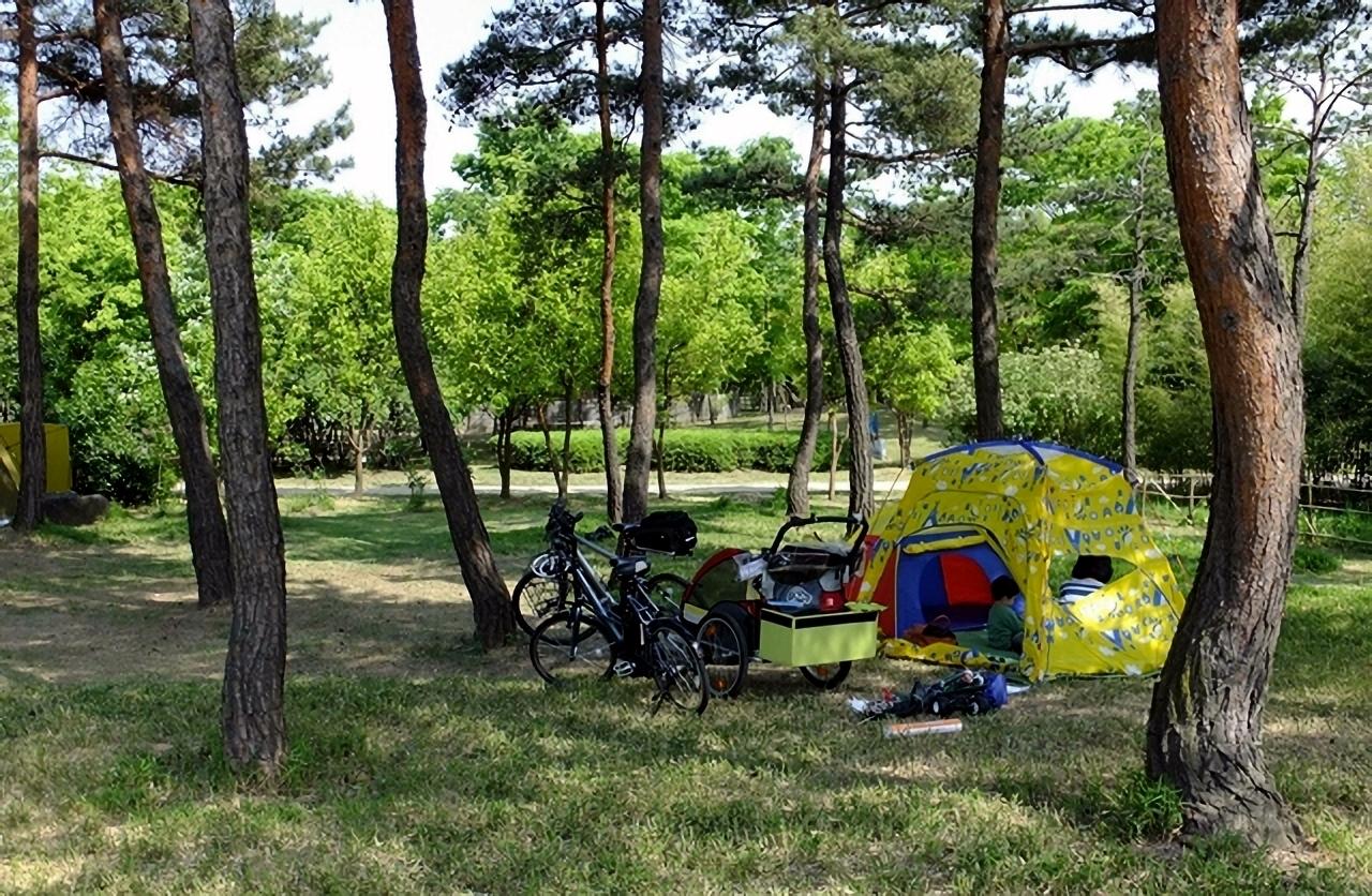 자전거에 장비를 싣고 와서 공원캠핑을 즐기는 시민들.
