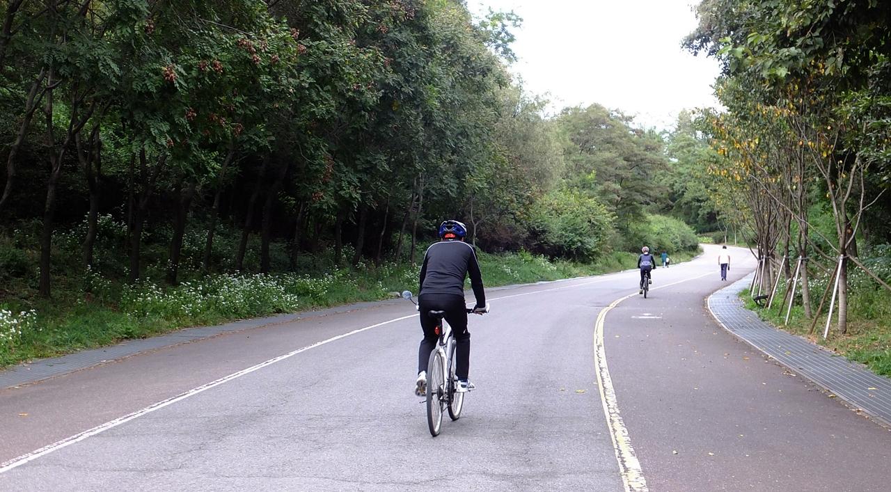 하늘공원을 향해 오르막길을 달리는 자전거탄 시민들.
