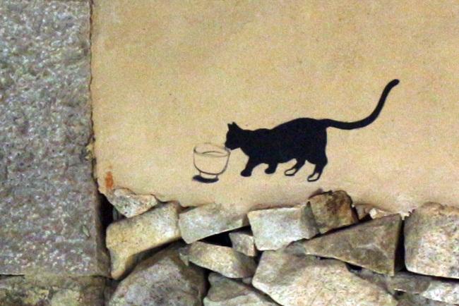 일지암, 물 마시는 고양이. 누가 물을 줬을꼬?