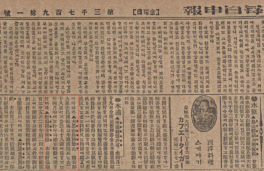 대흑산도 포경근거지에서 고래를 잡았다는 보도가 처음으로 실린 1918년 5월 3일 자 <매일신보>.