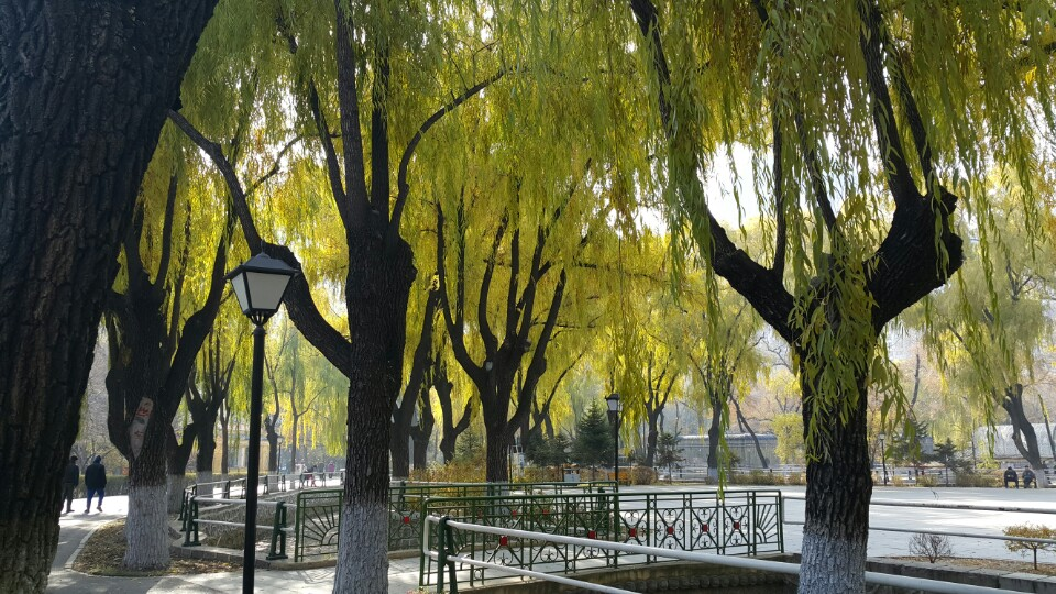 자오린 공원 안중근 의사가 거사를 모의했다는 장소로 알려져있다.