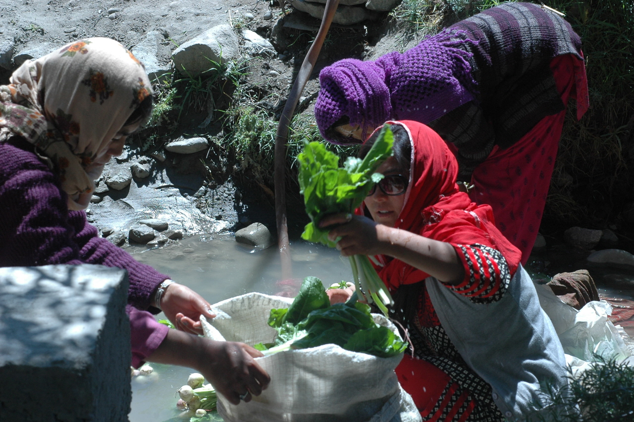 이웃 사촌들과 함께 히말라야 설산에서 흘러내려 오는 시냇물에 채소를 씻어 자루에 담고 있는 돌카