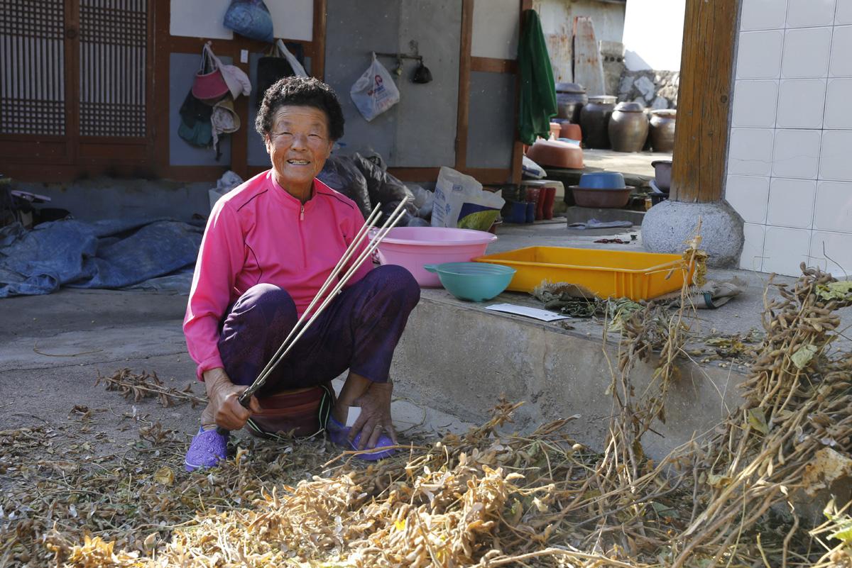 조계순 할머니가 집 마당에 널어놓은 콩을 털며 얘기를 하다가 웃고 있다. 지난 10월 24일 오후다.