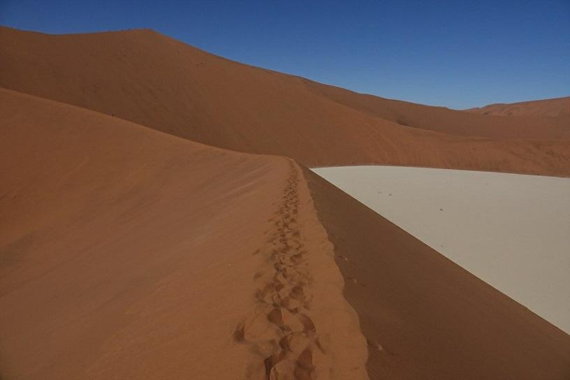 칼날 같은 모래 능선 세계 유일의 붉은 모래 사막인 이곳 데드블레이의 사막언덕들은 이와 같이 칼날을 세워놓은 것과 같이 날카로운 모습을 하고 있었다.