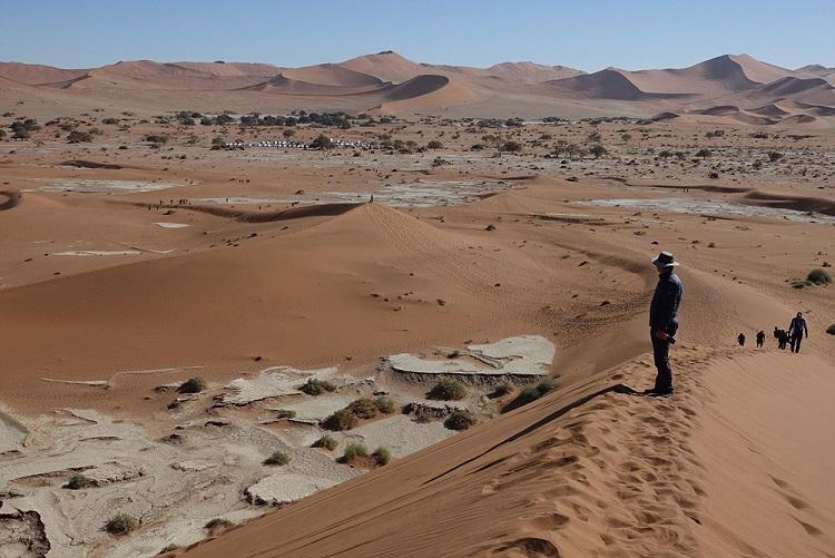 데드블레이 지역의 다양한 모습 모래 사구가 쌓여있는 모습이나 호수 바닥 자국, 일부는 초록의 덤불 숲도 보이는 등 다양한 형태의 사막의 모습을 한 눈에 보여주고 있다.