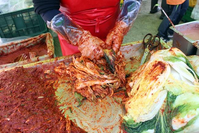 백양사 단풍축제장에 마련된 어느 부스에서 한창 배추김치를 담고 있습니다. 얼마나 입맛 땡기던지, 생김치에 연잎 밥을 먹기로 했지요.