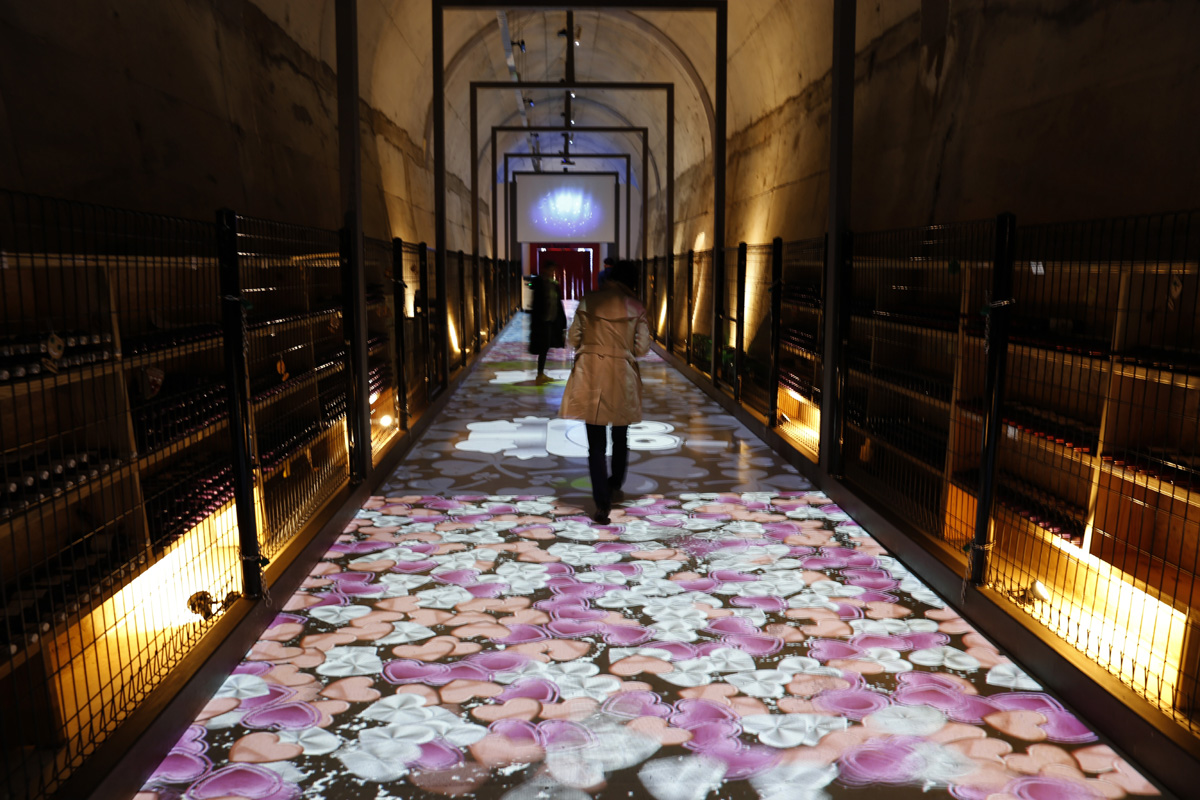 미디어 인터랙티브존. 관람객의 발길을 따라 꽃길이 열린다. 상상 이상의 감동을 선사한다.