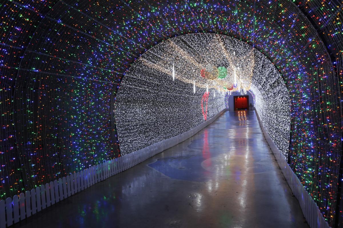 연말 분위기를 자아내는 화려한 빛의 터널. 일반 관람객은 물론 어린이들이 특히 좋아하는 구간이다.