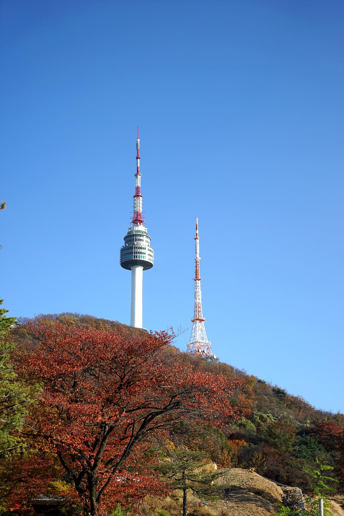 남산 계단으로 오르며 바라본 남산타워