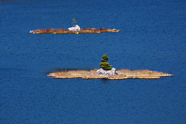 물 가득한 호수 한쪽에 물에 잠기지 않은 흙이 있고 바위가 있고 나무가 있다. 아마도 시간이 흘러 전설이 될 요량이다.