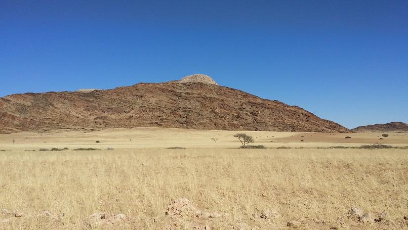 사막 한가운데를 달리다 만난 누우 떼 나미브 사막을 관통하며 차를 달리다 보면 이렇게 가끔 누우 데와 얼룩말을 만나기도 한다.