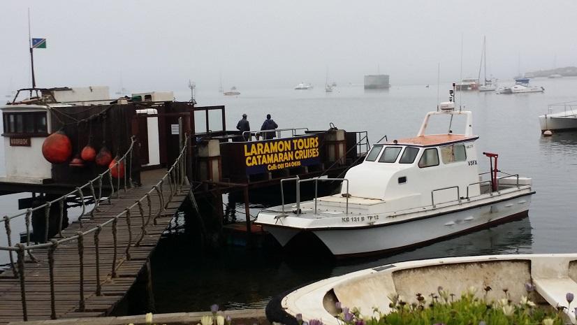 웰비스베이 선착장 이곳 선착장에는 돌고래 크루즈 여행에 나서는 배들이 많았다.