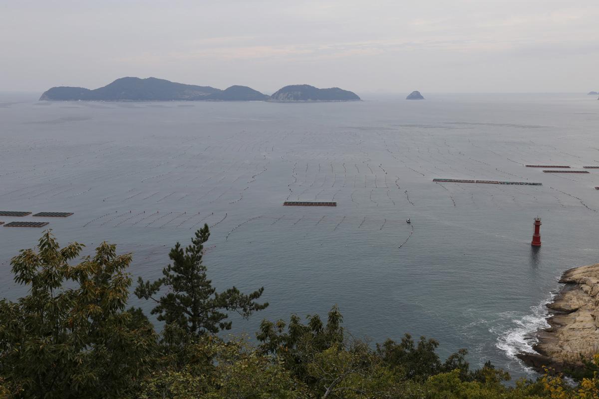 소안도에서 본 당사도 전경. 1909년 소안도 주민들이 이곳 자지도(당사도)의 등대를 습격, 일본인 간수를 처형했다.