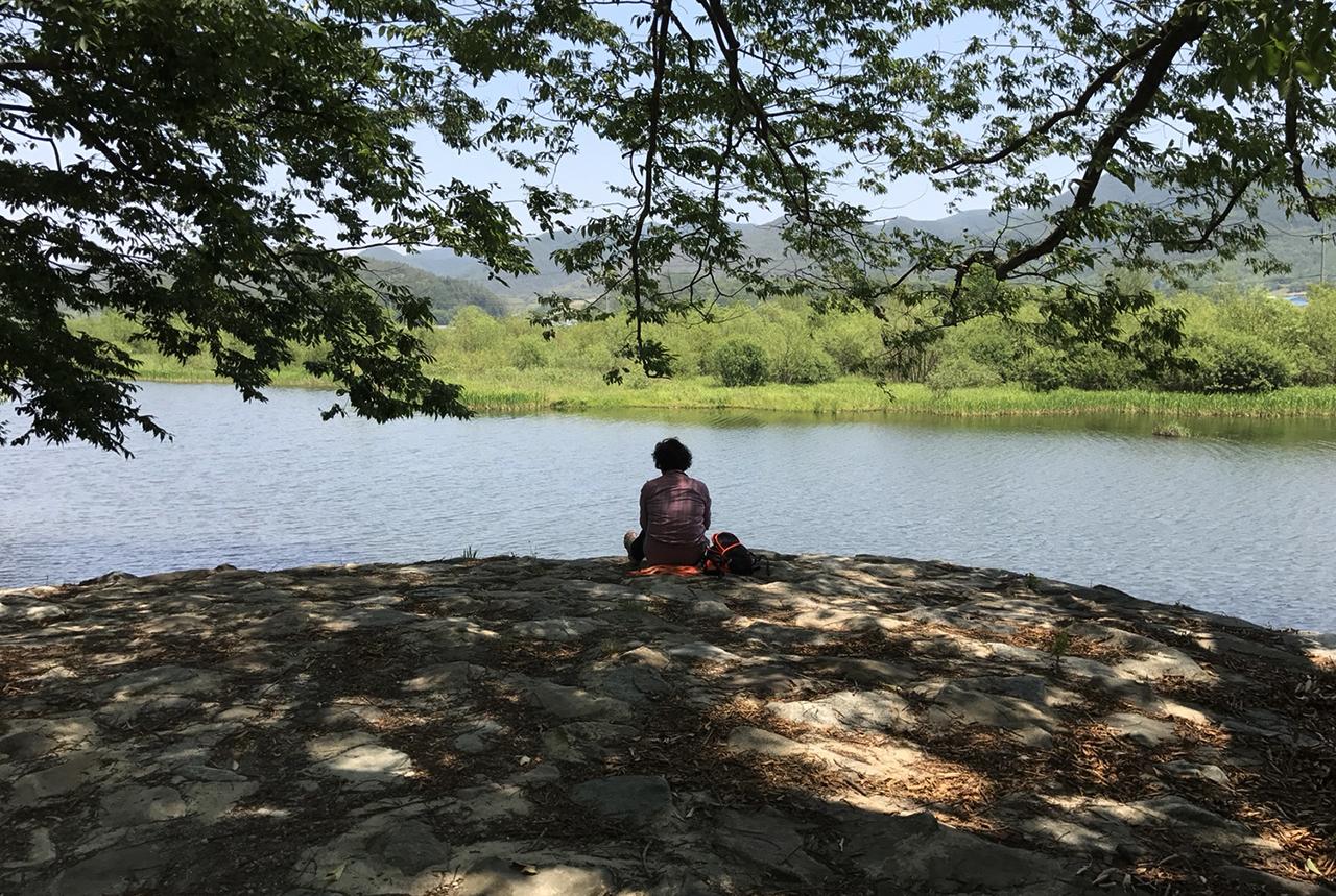 지난 늦봄, 한 중년 여성이 화순 연둔리 숲정이길 느타나무 아래에 홀로 앉아 있다.