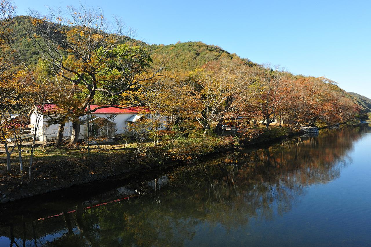 전남 화순 연둔리 숲정이길에 가을이 깊었다.