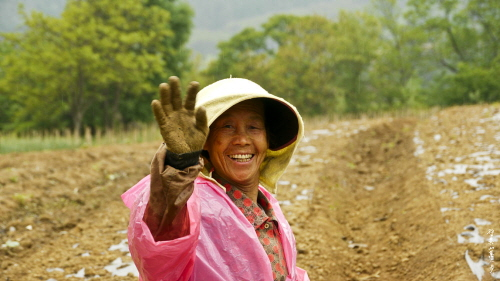 밭에서 만난 아주머니는 흙 묻은 손을 흔들며 환한 웃음을 지어 주셨다