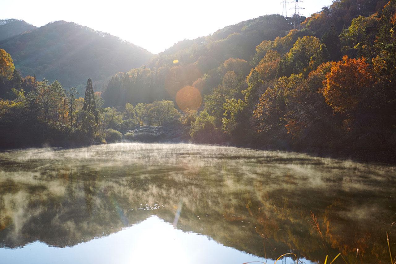 화순 세량지의 가을.