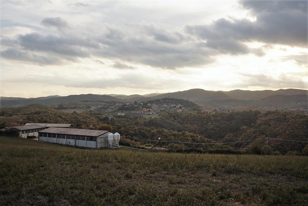 산타마리아 농장의 풍경