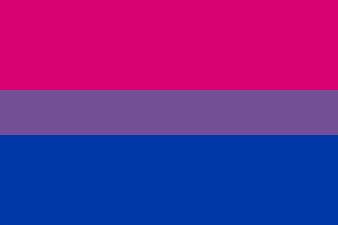 양성애를 상징하는 플래그   성소수자에는 동성애자, 트랜스젠더만 있는 것이 아니다