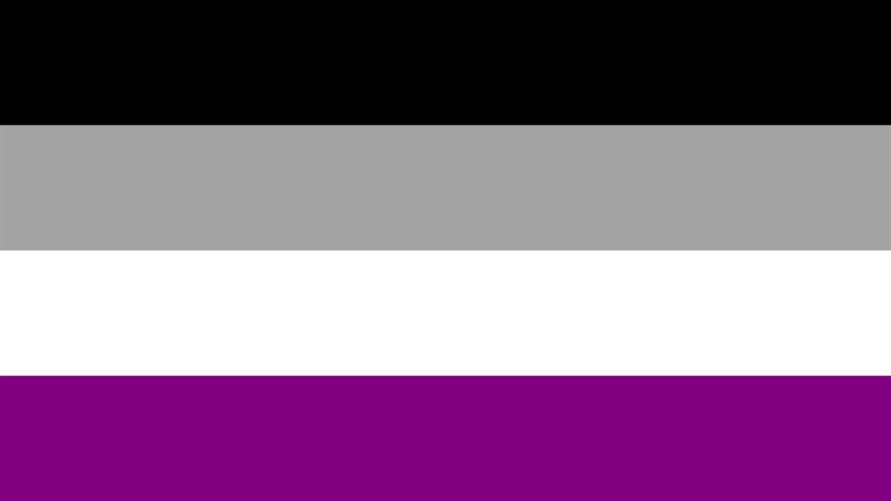 무성애를 상징하는 플래그 성소수자에는 동성애자, 트랜스젠더만 있는 것이 아니다