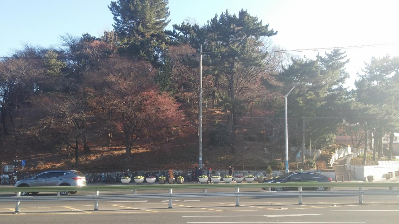울산 중구 학성동에 있는 학성공원. 울산 중구청이 입구(오른쪽)에 왜장 가토 기요마사 동상을 세우기로 해 논란이 일고 있다