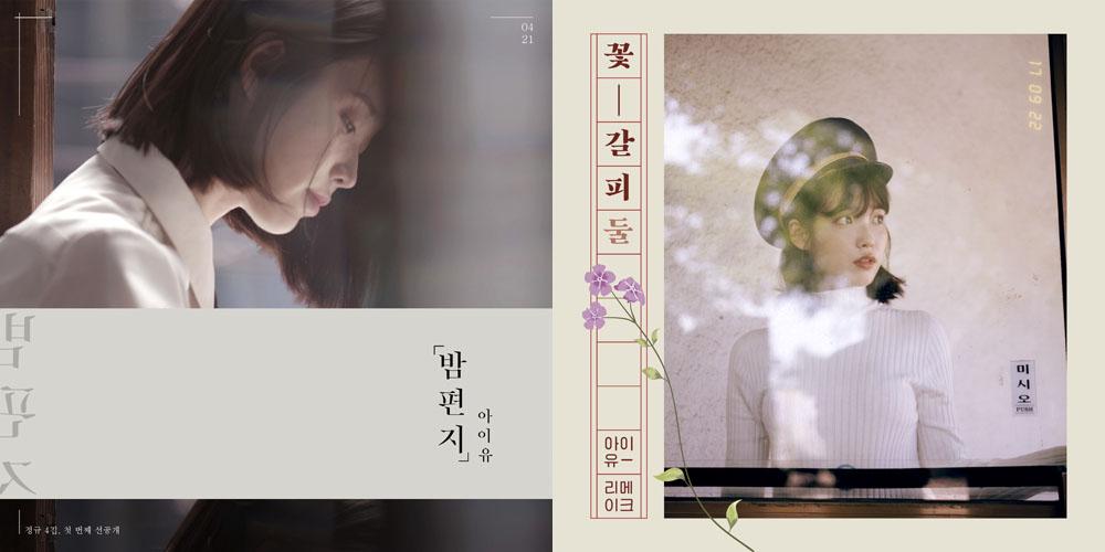 아이유는 올해 발표한 2장의 음반을 통해 솔로 가수의 자존심을 충분히 세워줬다.