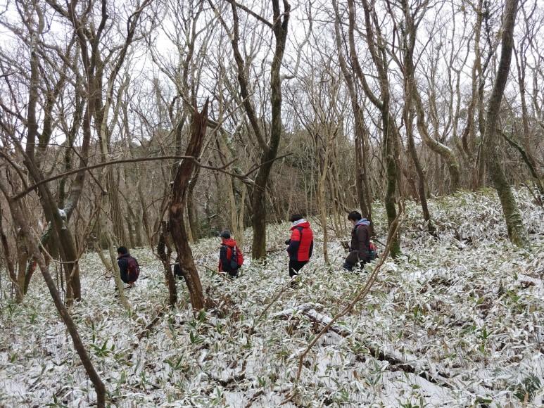 눈 덮인 숲길을 걷는 4.3 제주위원회 회원들