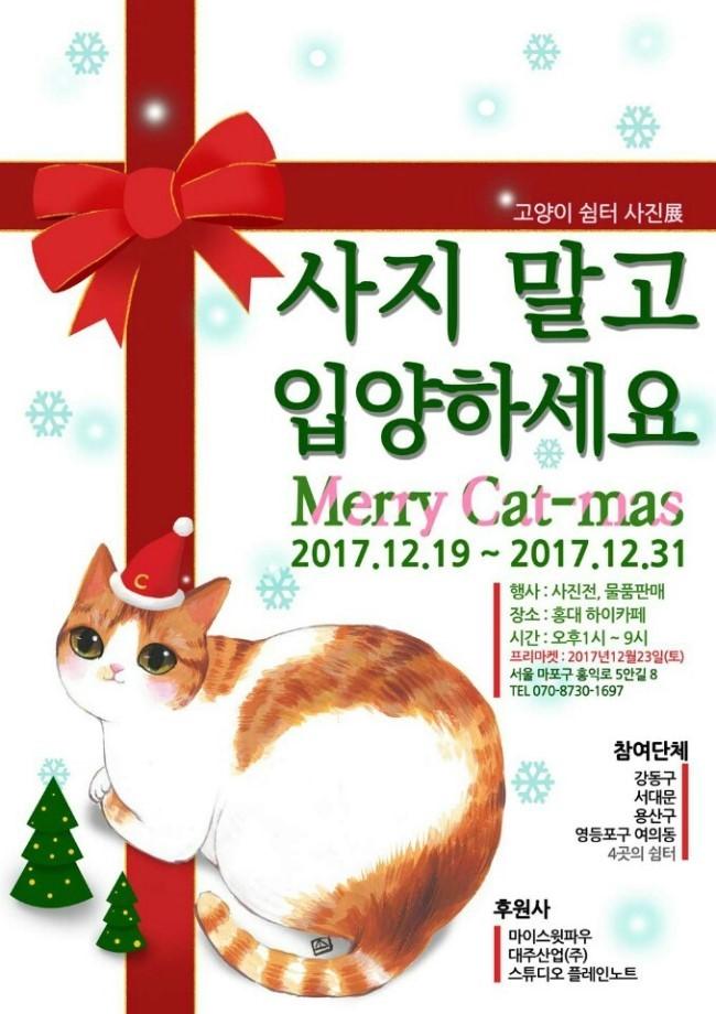 사지 말고 입양하세요. Merry Cat - mas 고양이 쉼터 사진전 홍보 포스터