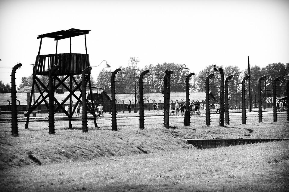 수용소의 하루를 그린 작품이지만, 조금도 어둡지 않은 이야기다.