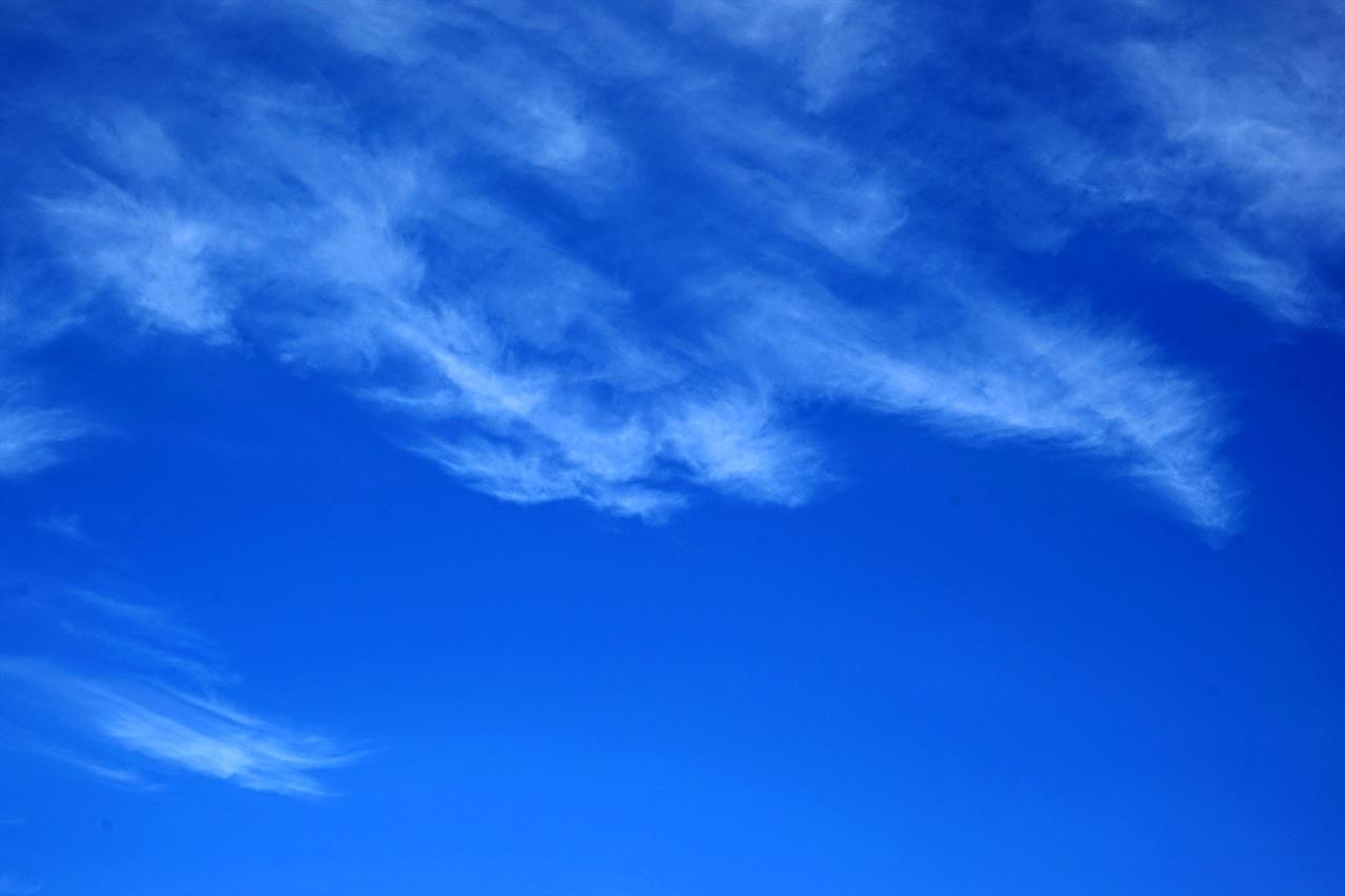 파란 하늘에 그린 그림