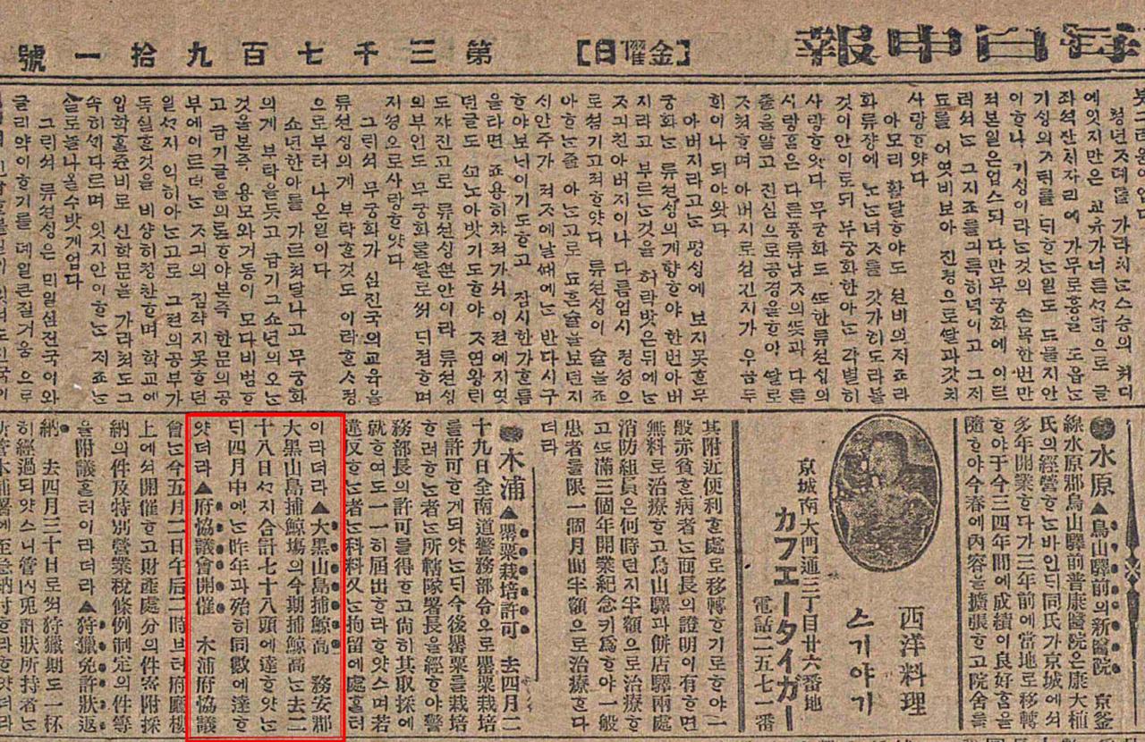 흑산도 포경근거지 관련 기사가 처음으로 등장하는 <매일신보> 1918년 5월 3일자.
