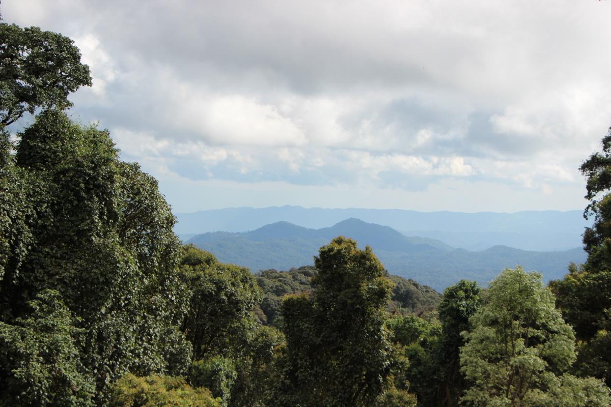 도이인타논 국립공원