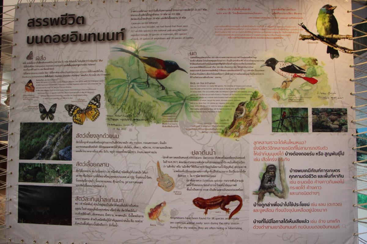 생태박물관의 동물 자료
