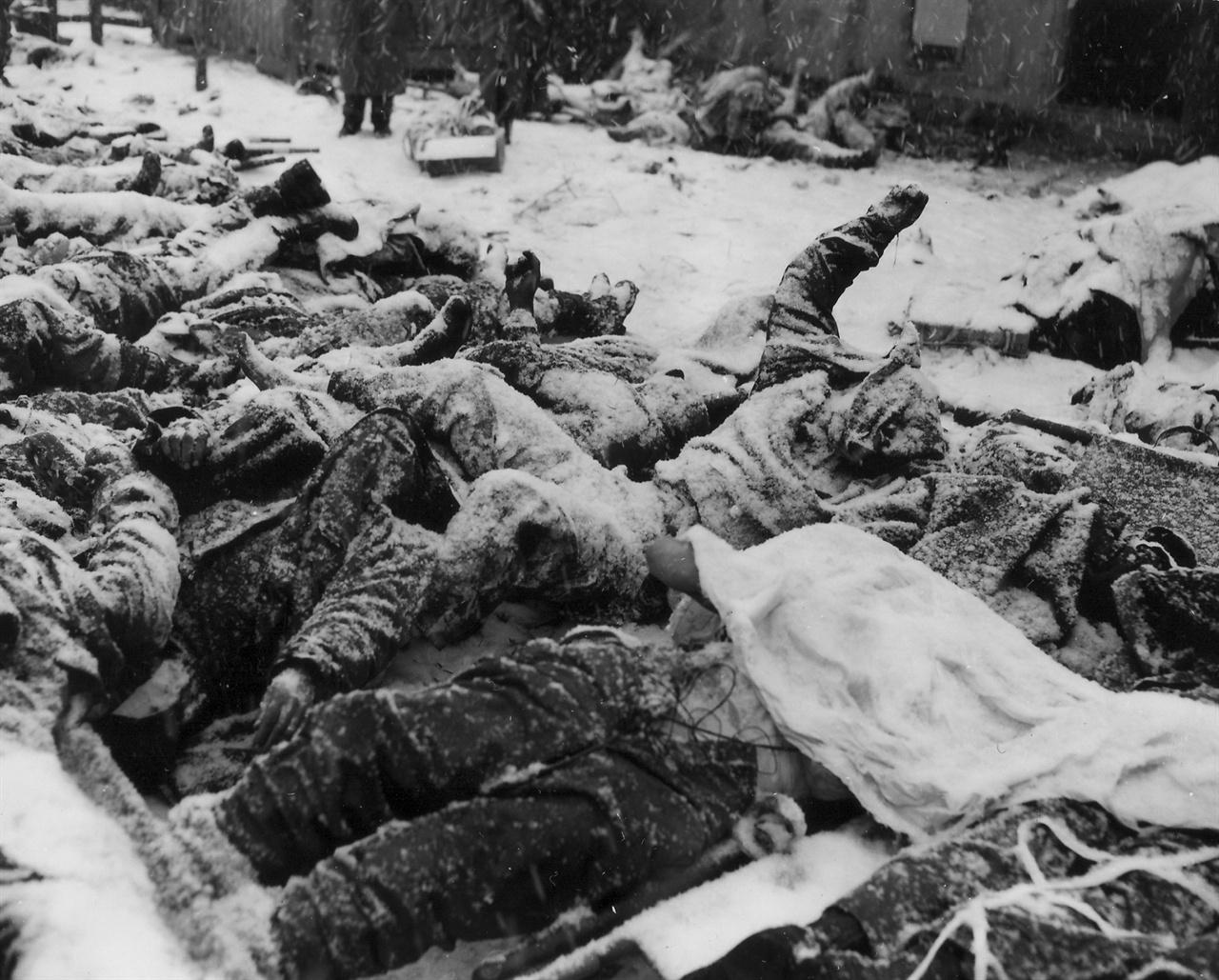 1950. 12. 8. 고토리. 장진호전투에서 혹한을 만나 동사한 유엔군 시신들.