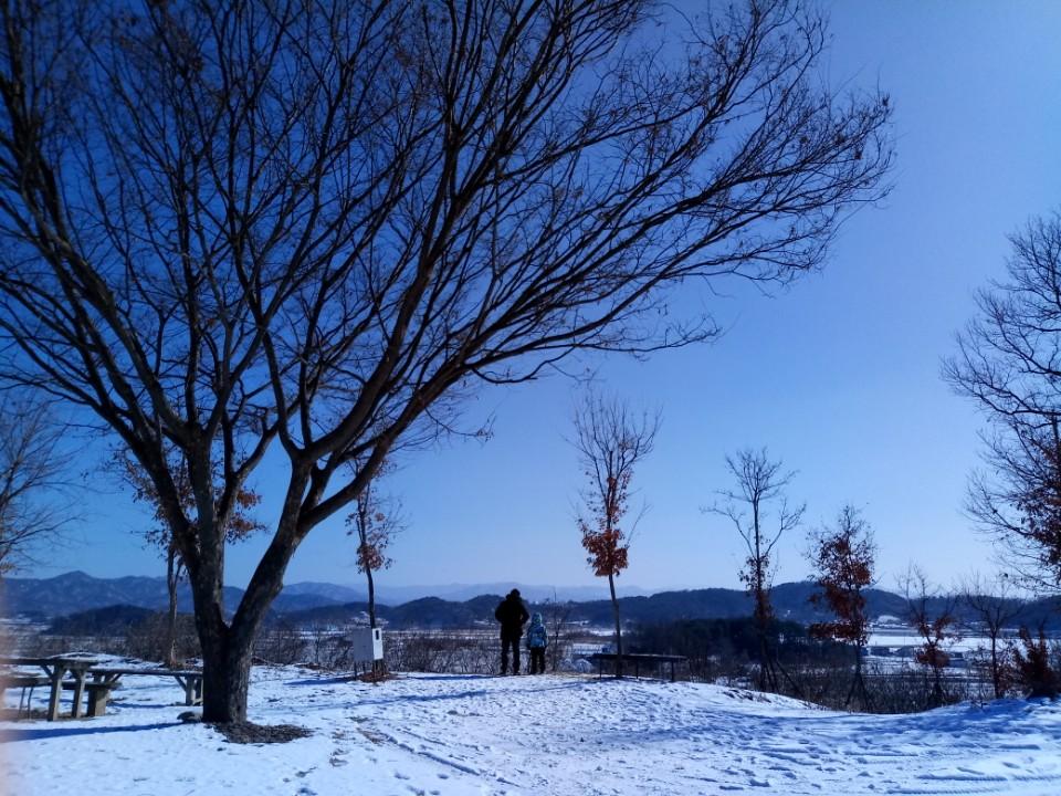 철원 도피안사 눈이 시리도록 맑은 풍경, 겨울의 풍경