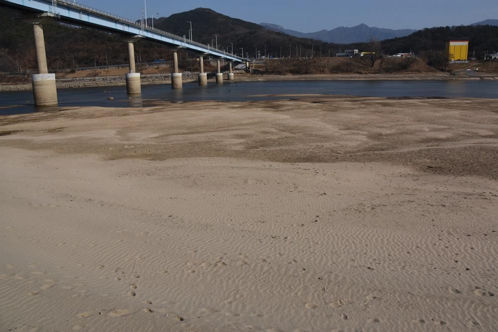 낙동강의 부활 모래톱이 돌아오고 맑은 강물이 흐르는 4대강사업 전의 낙동강으로 되돌아가고 있다. 낙동강이 비로소 부활한 것이다. 단지 수문 하나만 열렸을 뿐인데 말이다.