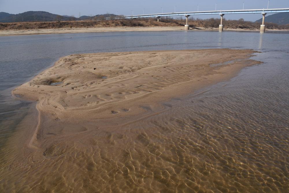 넓은 모래톱이 돌아오고, 맑은 강물이 흐르는 낙동강. 4대강 재자연화가 실현되고 있는 현장이다.