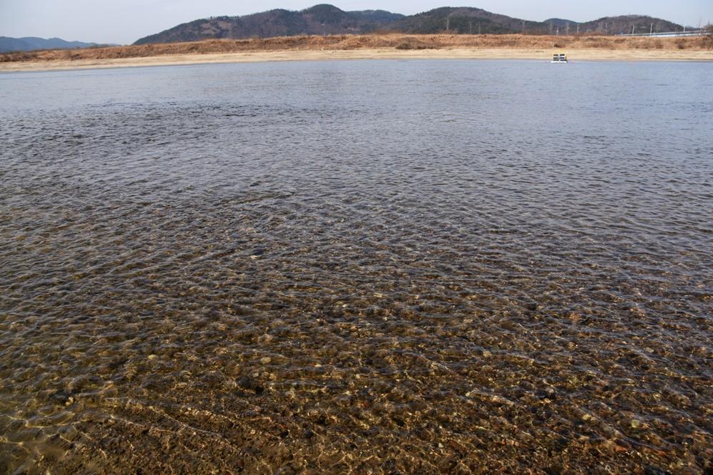 여울까지 만들어지면서 강물이 여울목을 지나 힘차게 흐르고 있다. 놀라운 변화다. 강은 생각보다 빨리 제자리를 찾아간다.