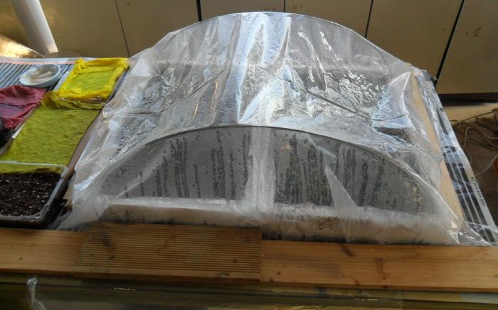 난방필름위에서 물수건으로 씨앗의 싹을 틔우는 최아(좌측)와 가식을 위해 싹을 틔우고 있는 모판의 수분유지와 보온을 위해 비닐을 씌웠다