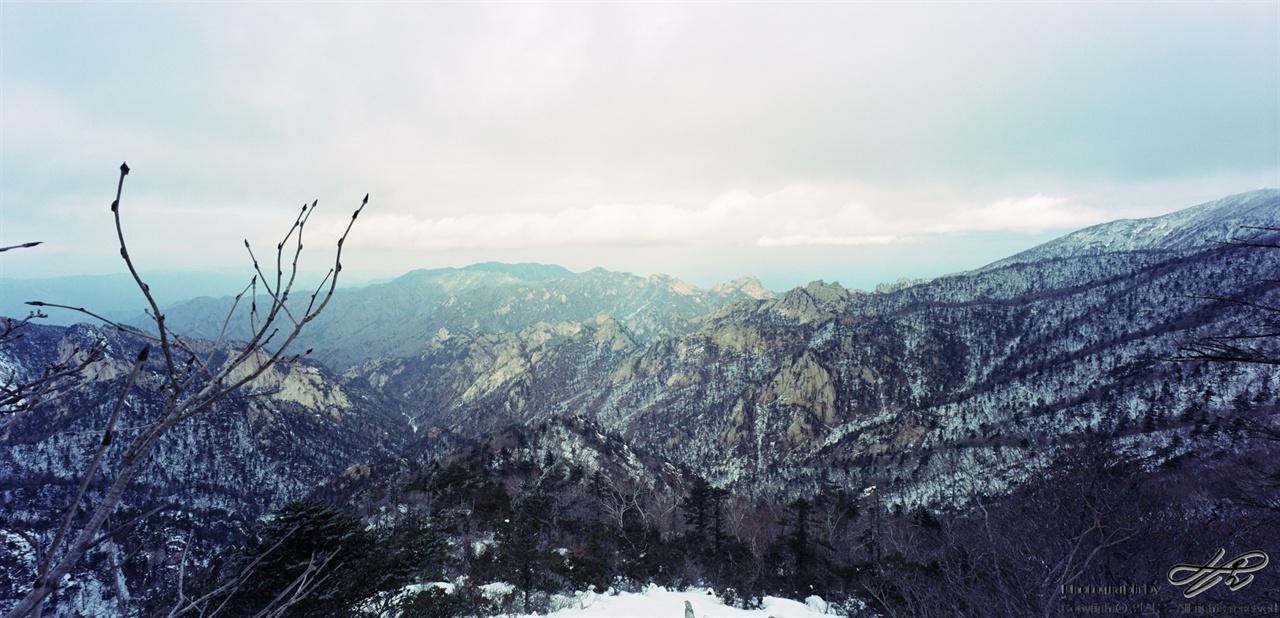 서북능선에서(5) 흙과 나무 사이로 바위들이 드러나있다. 그나마 빛이 조금이라도 좋은 곳에서 멈추어 담은 사진.
