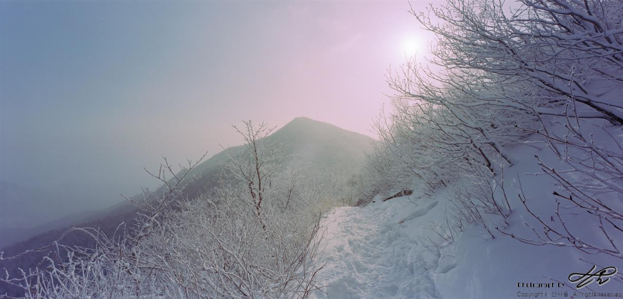 중청에서 소청으로 가는 길 하얀 가지들 사이로 하얀 길이 나 있다. 뒤편에 보이는 봉우리는 대청봉.